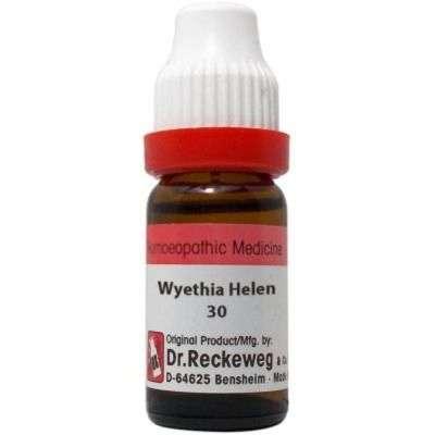 Buy Dr. Reckeweg Wyethia Helenoides - 11 ml