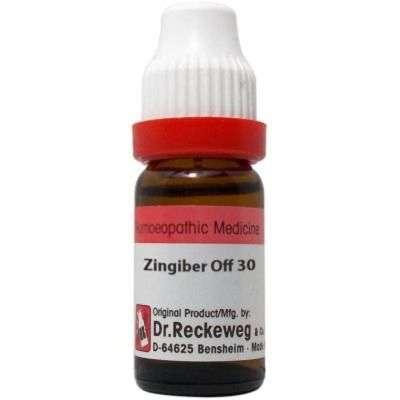 Buy Dr. Reckeweg Zingiber Officinale - 11 ml