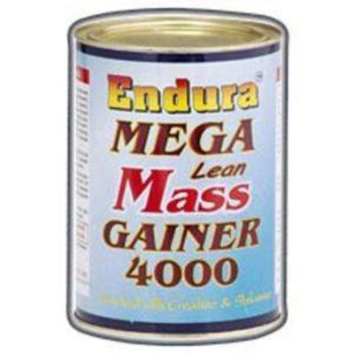 Endura Mega Lean Mass Gainer 4000