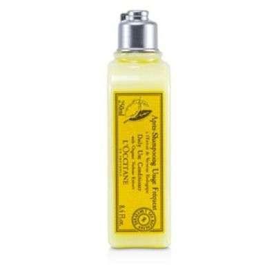 Buy L'Occitane Citrus Verbena Daily Use Shampoo