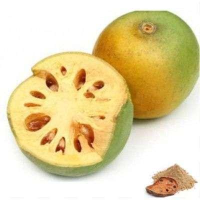 Buy Vilva pazham / Bael Fruit Powder